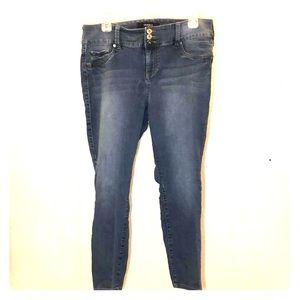 Torrid Stretch Skinny Jean